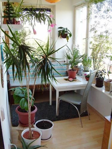 Home Decor Stuff! - cover
