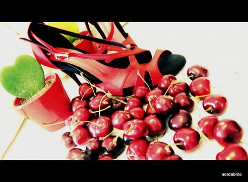 rosso tango... by Norda Brilo