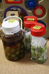 梅酒と梅ジュースを仕込む (2012/6/17)