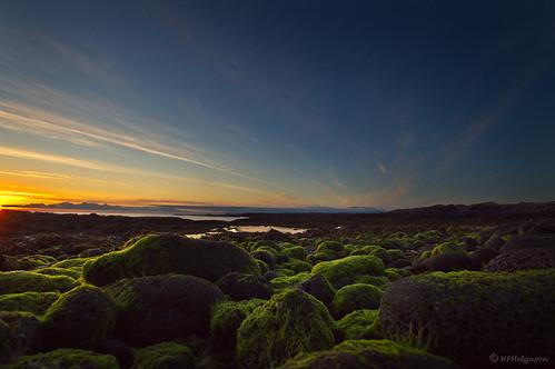sunset green beach shore strönd summernight fjara sólsetur grænt sumarnótt