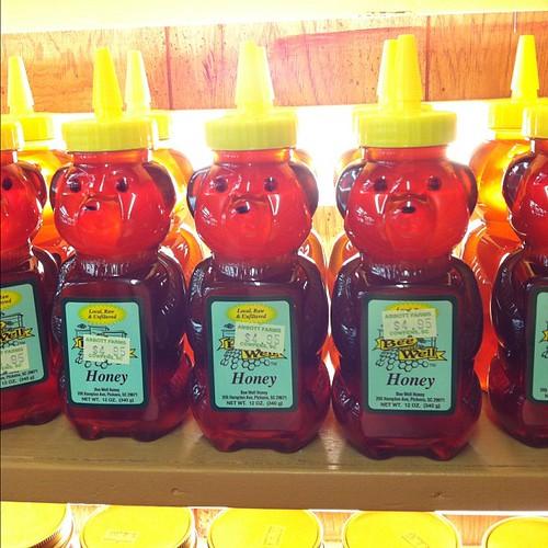 Honey bears, Abbott Farm, SC.