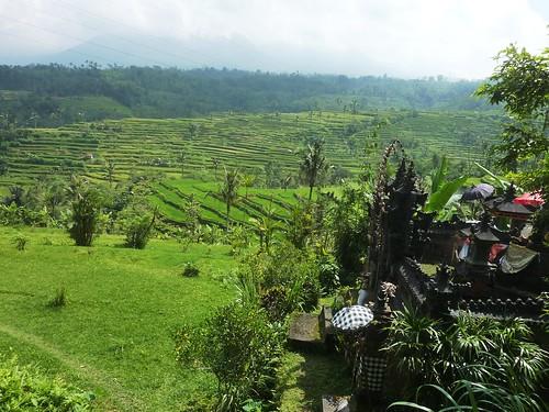 Bali-Route Legian-Jatiluwih (91)
