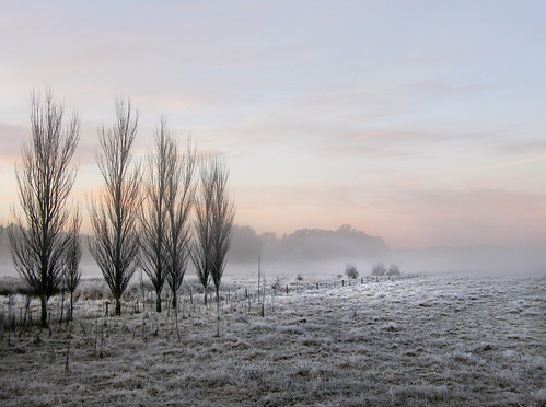 FROSTY MORNING  (EXPLORED) by jgspics