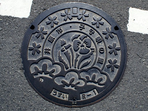 Ibara Okayama Manhole cover (岡山県井原市のマンホール)