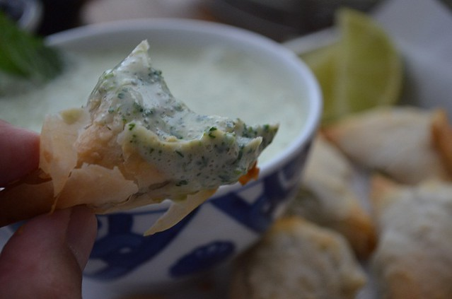 cilantro and mint yogurt sauce