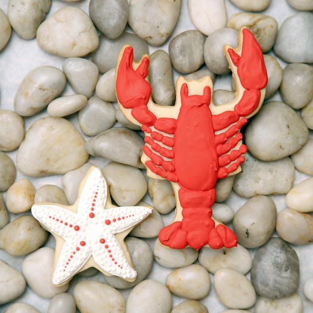 lobsterstarfish2