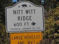 Nitt Witt Ridge, Cambria