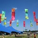 Floating flags at WOMAD