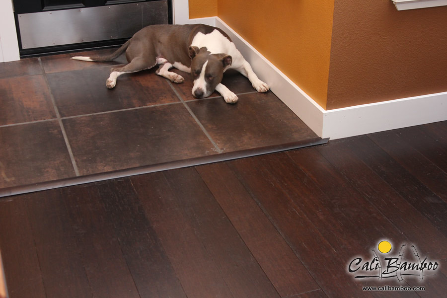 Hardwood flooring dogs calibamboo greenshoots for Hardwood floors with dogs