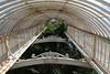 Kew Palmhouse by richardr