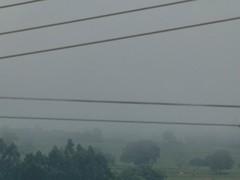 Final de tarde com neblina / A foggy afternoon