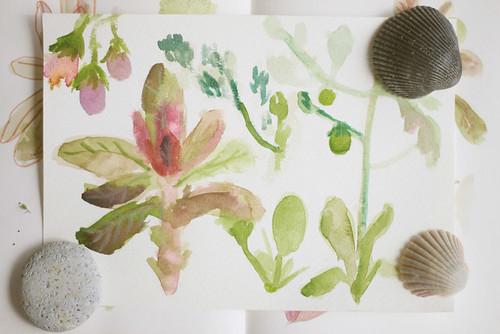 Garden Sketches 03