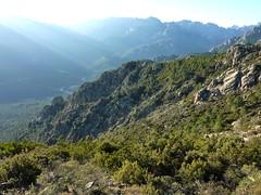 Trace de la crête d'Alzu di Lanu : Punta di Pusu et son arête S avec les vallées du Haut Cavu