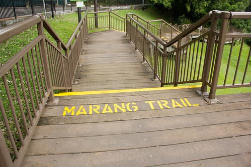 Marang Trail