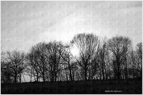 BLACK & WHITE by Scatti di Luce di Raffaella Amoruso