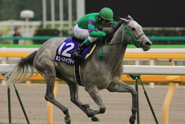 ヴィクトリアマイル勝ち馬 ホエールキャプチャ(横山典弘)