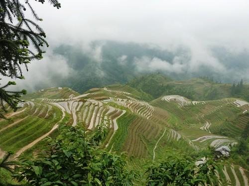 C-Guangxi-Pingan-Terrasse des 7 etoiles (47)