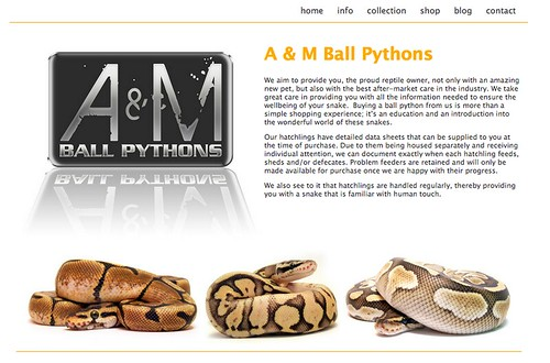 ... website has a wealth of information on ball pythons as well as an online ...