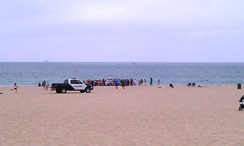 Stanley Cup Manhattan Beach