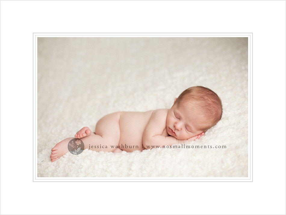 Albany newborn photographer