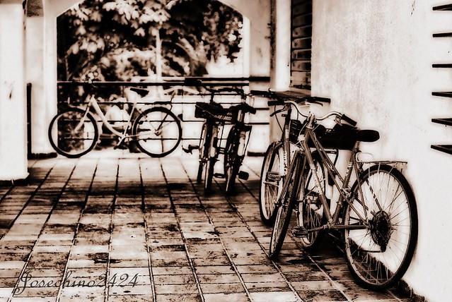 Las bicletas son para el verano