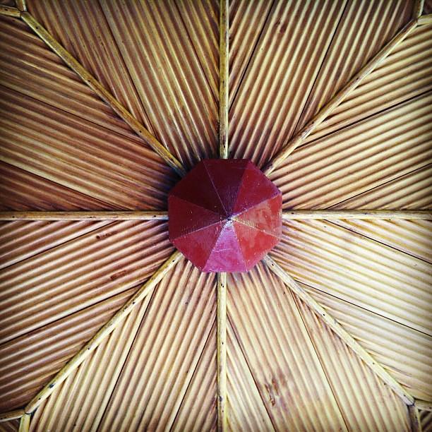 Rose pavilion ceiling #melbourne #gardens #pattern