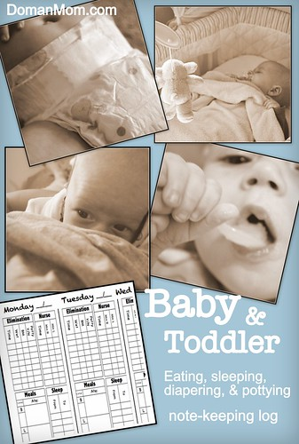Infant Toddler log