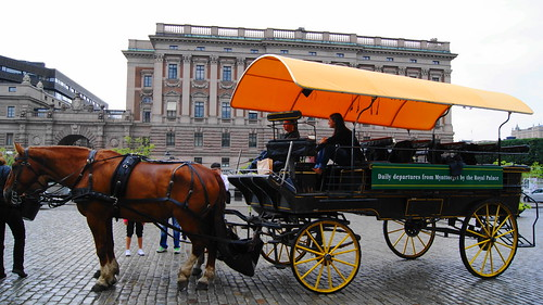 Stockholm horse carriage