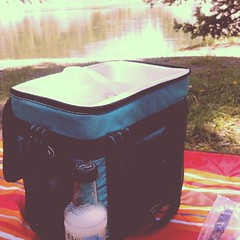 Picnic by Yellowstone River