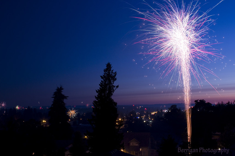 WA_10387_BG fireworks