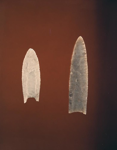 Clovis Projectile Point