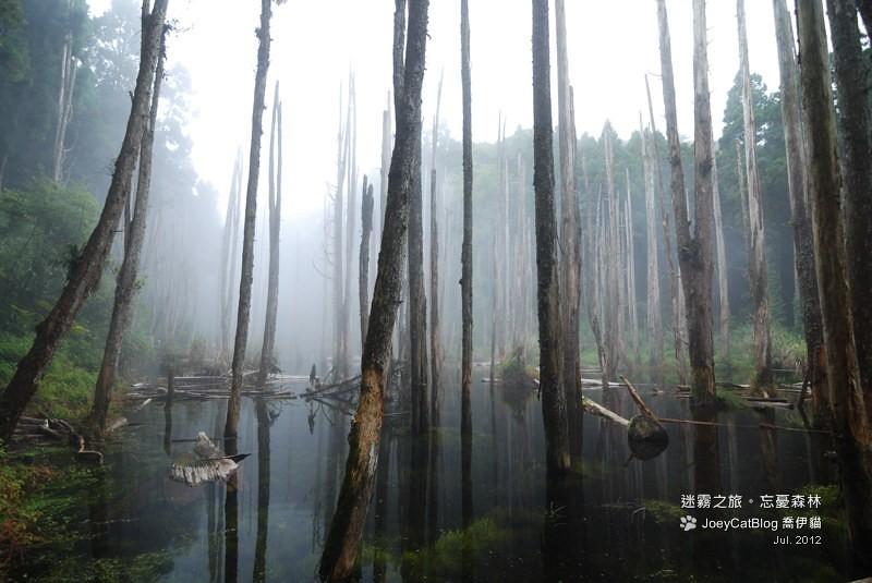 2012_0715_迷霧之旅。初訪忘憂森林DSC_5032
