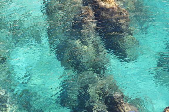 Amarantos the most amazing sea