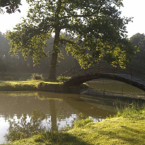 beautiful morning light, Kasteel van Viane
