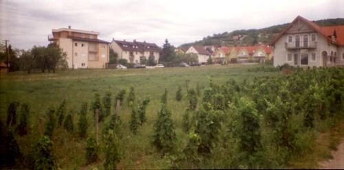 2012.08.06-13. Balaton_0138