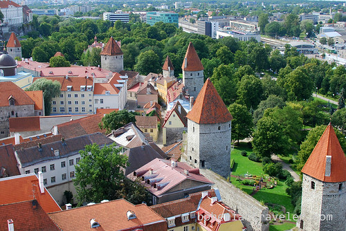 view from St Olaf tower Tallinn (2)