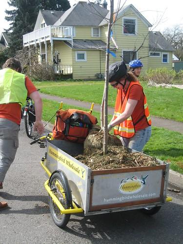 April 7, 2012 Arbor Day Planting in Eugene