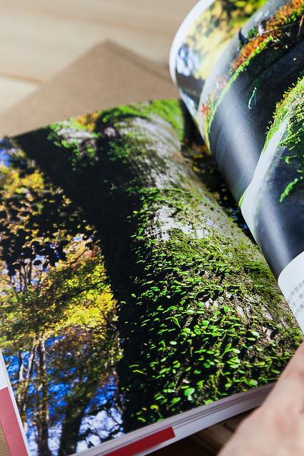 photobook-0046