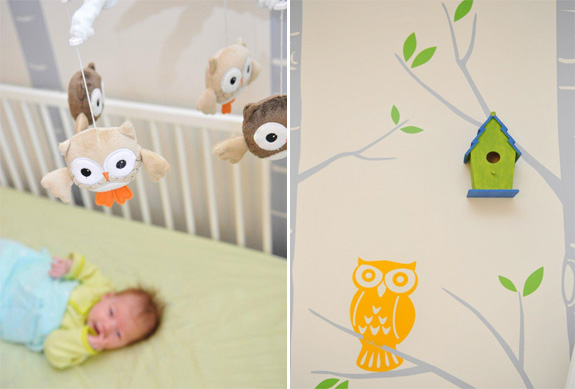 Owl Nursery - Tree Decals Stickers - Gender Neutral Baby Room
