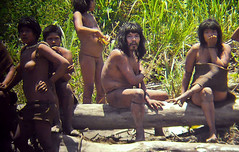 Amazon road could cut uncontacted tribes' land in half