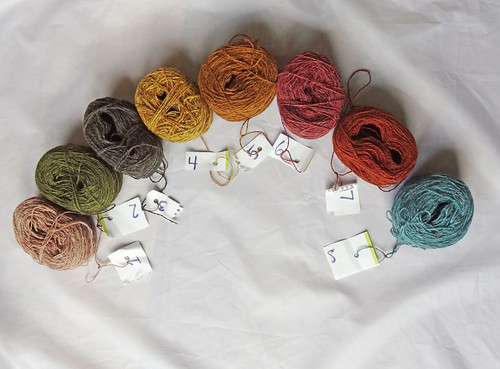 Blog Week Shaw Yarn All