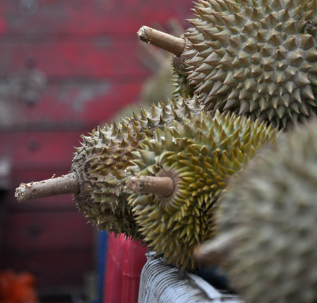 Durian ...