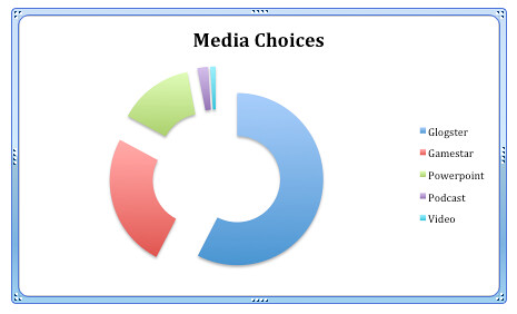 Media Choices Essay Project
