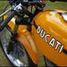 Ducati in orange by Eric Flexyourhead