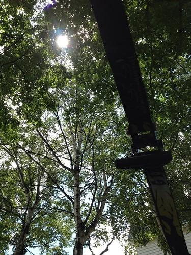木漏れ日スラックライン