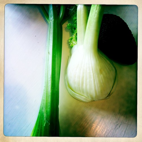 Raw Fennel Soup