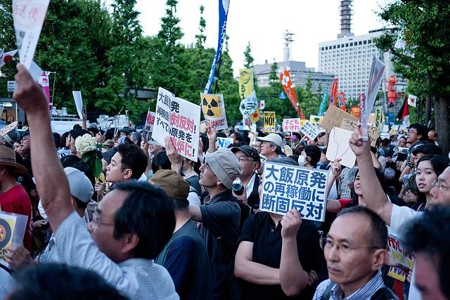 hydrangea Revolution (June 29, 2012)