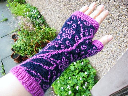 Something Floral Mitts