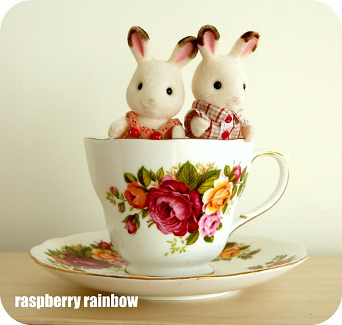 Bunnies in a tea cup