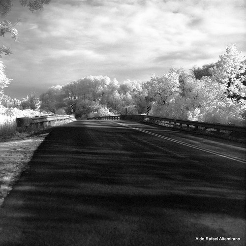 road bridge trees summer sky blackandwhite bw white reflection tree 6x6 tlr film nature water rural mediumformat reflections river square landscape ir photo kodak scanner pennsylvania country hc110 pa filter land infrared epson konica v600 perfection 2012 750 80mm selfdeveloped r72 yashicamatem kodakhc110 konicainfrared konica750 yashinon80mmf35 750nm konicainfrared750nm konica750nm epsonv600 epsonperfectionv600photo epsonperfectionv600 bowerr72ir infrared750nm